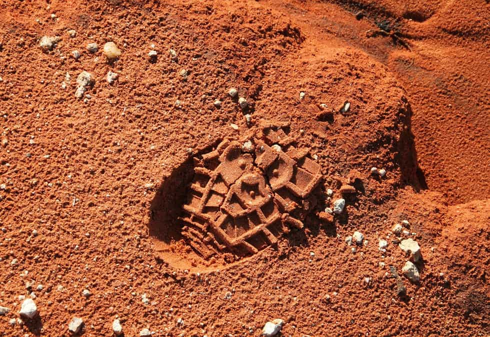 "WALKING THE WALK: ""What is the Walk?"""