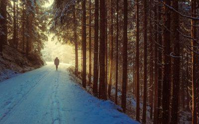 Ephesians: The Way We Walk (II)